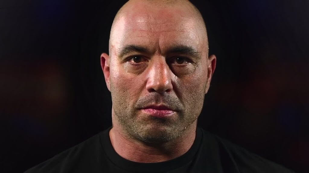 coolest joe rogan quotes